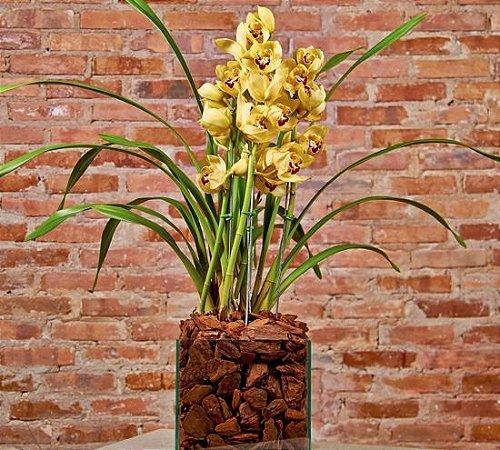 Orquídea Cymbidium amarela em base de vidro