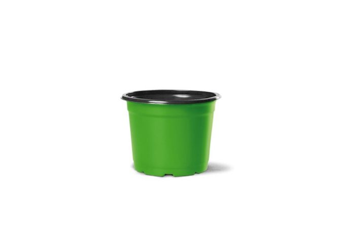 Pote Holambra NP06 Verde Limão e Preto 0,090 Litros - 50 unidades