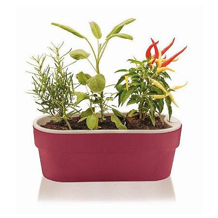 Jardineira Auto Irrigável Hortinha Cor Marsala