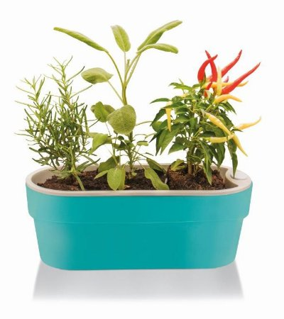 Jardineira Auto Irrigável Hortinha Cor Azul