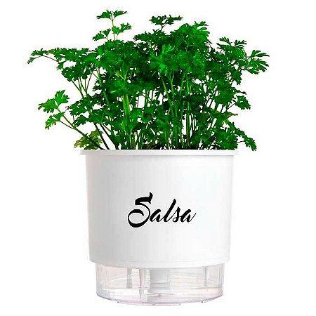 Vaso Auto Irrigável Linha Gourmet Branco Salsa N03 – Médio 16x14