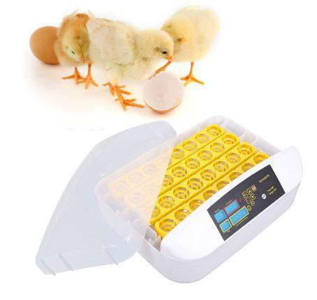 Incubadora Chocadeira Ovos 220v Automática - Cabem 32 Ovos