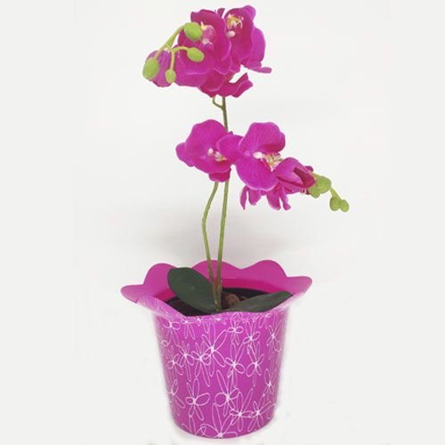 VASO PET FLOR FLEXIVEL GG  - ROSA - KIT COM 5 UNIDADES