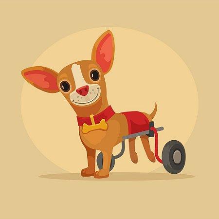 Ajude um Cachorrinho Deficiente