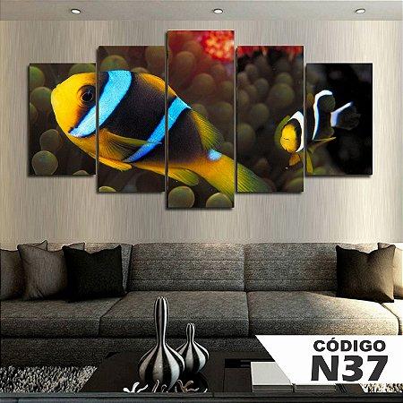 Quadros decorativos peixe palhaço