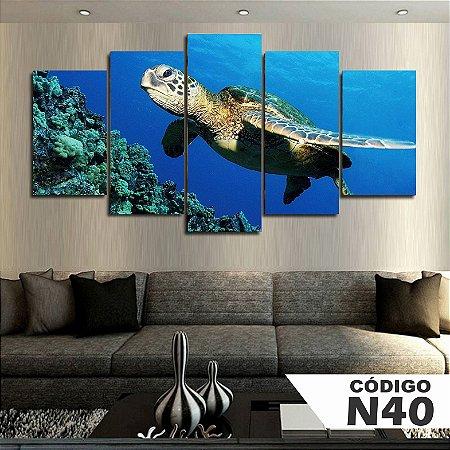 Quadros decorativos tartaruga