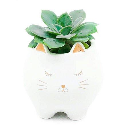 Vaso Cachepô em Cerâmica Gato Dourado - Pequeno