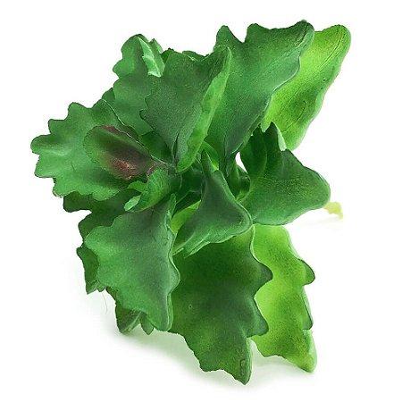 Planta Suculenta Artificial MD5