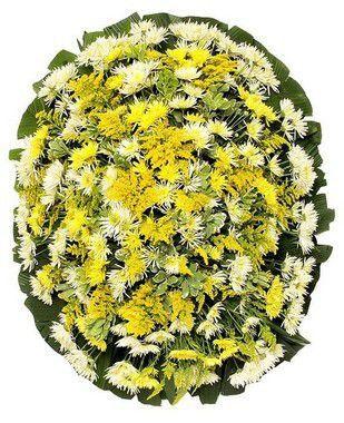 Coroa de Flores Brasilia 1 | Faixa de Homenagem Grátis
