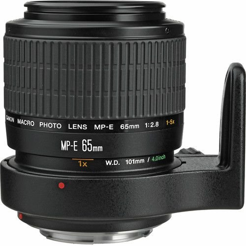 Lente Canon MP-E 65mm f/2.8 1-5x Macro