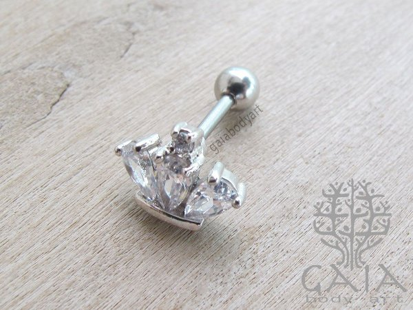 Barbell Aço Zircônias Crown