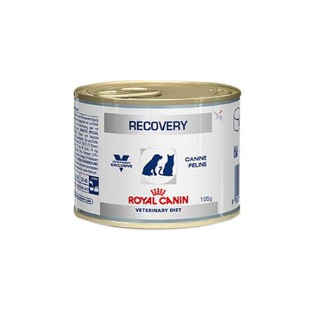 Ração para Cães e Gatos Royal Canin Recovery 195g