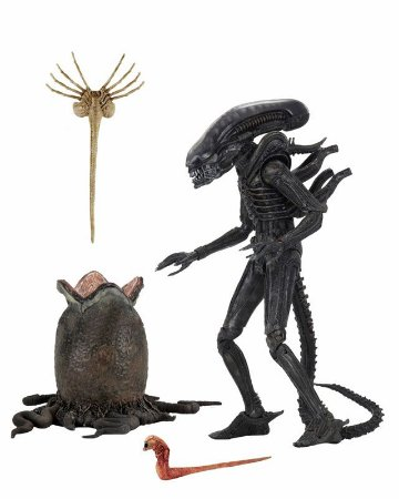 Alien Big Chap Alien 40º aniversário Ultimate Neca Original
