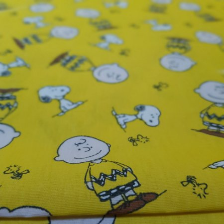 Charlie Brown. Tricoline 100% Algodão. TN0115-50X70cm