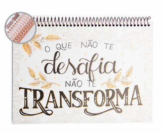 Caderno Álbum Transforma