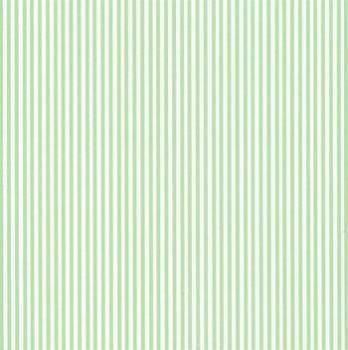 Folha de Scrapbook Listrada Verde