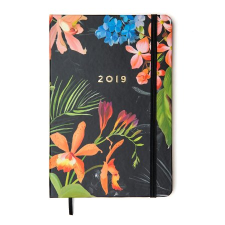 Agenda Floresta Tropical 2019