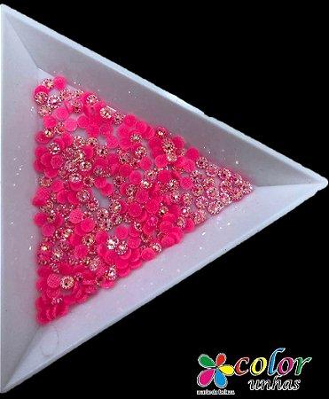 Margarida Rosa fluorecente - 3 MM