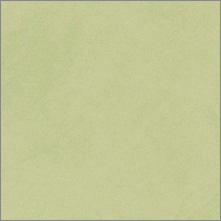 Ladrilho Hidráulico Liso Verde Claro 20x20