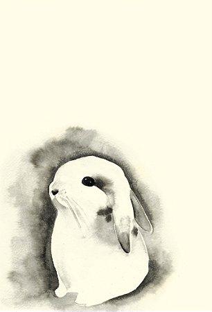 Poster Coelho