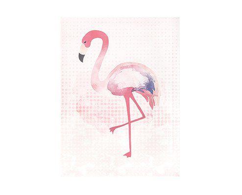 Quadro em Canvas Flamingo