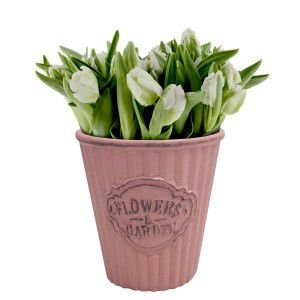 Vaso Flowers & Garden