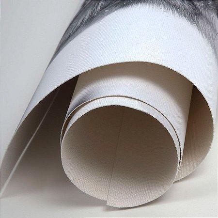 Tecido canvas para impressão digital tinta base água dye (corante) e pigmentada rolo com 20 metros