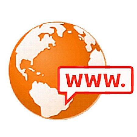 Registro de Domínios Internacionais