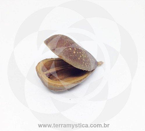 FAVA DE OPELE - IFA