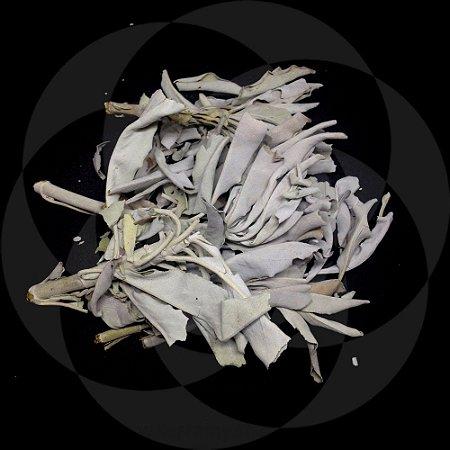 SALVIA - FOLHAS : 20 gr