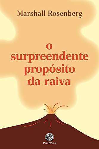O SURPREENDENTE PROPOSITO DA RAIVA