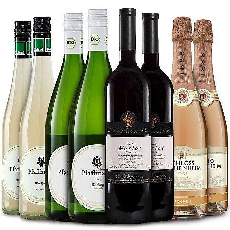 Kit especial degustação com 8 garrafas