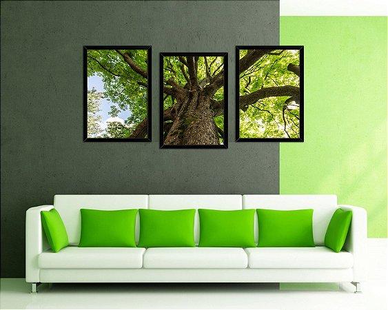 Kit Quadros Decorativos - A Árvore Forte 3 Peças