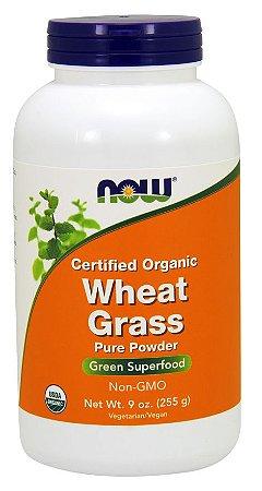 Wheat Grass Powder Organic NOW 255g