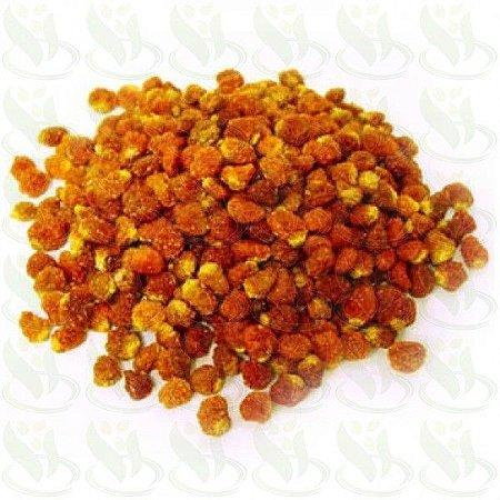 Golden berry secas em passas (Granel 200g)