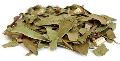 Folhas de Eucalipto 20g