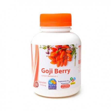 Goji Berry Vitamina A, C, E e Zinco 500mg 60caps