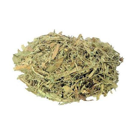 Chá de Chapéu de Couro (Echinodorus macrophyllum) 100g