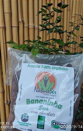 Banana com Chocolate Orgânico AMMA 70% 500G
