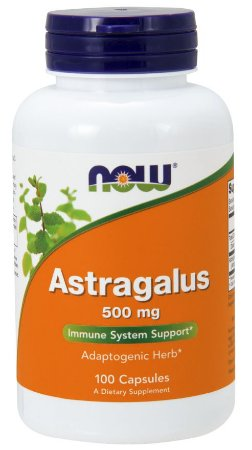 Astragalus 500 mg 100 Capsules NOW Foods