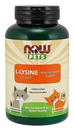 L Lysine for Cats para gatos em pó 8oz 226g NOW Pets