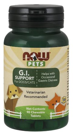 G.I. Support for Dogs & Cats para cães e gatos 90 Chewables tabs NOW Pets