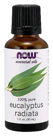 Óleo essencial de Eucaliptus Radiata eucalipto radiata 1oz 30ml NOW Foods
