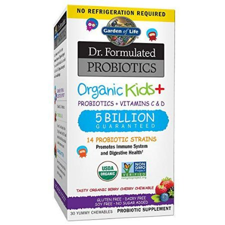 Probiotics Organic Kids Probiotico para criancas Dr. Formulated 30 yummy chewables GARDEN OF LIFE