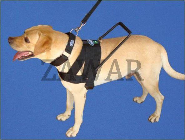 Peitoral para Cão Guia (Kit)