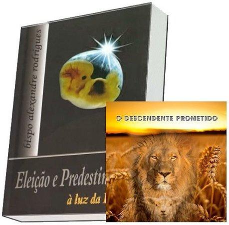 Combo Livro + CD Descendente Prometido
