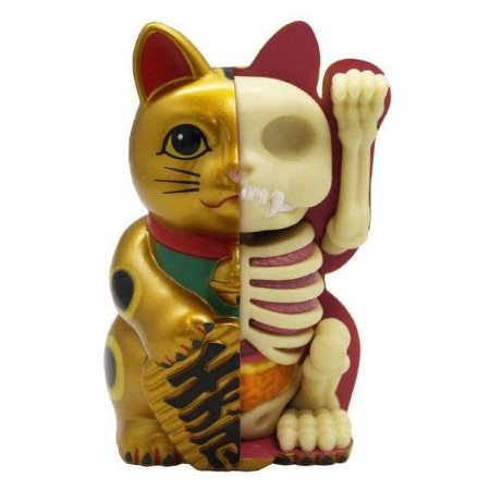 Jason Freeny -  Mini Fortune Cat Funny Anatomy