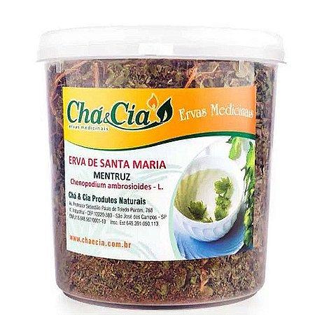 Erva de Sta Maria Mentruz - Chenopodium - Pote 60 grs- Cha e Cia