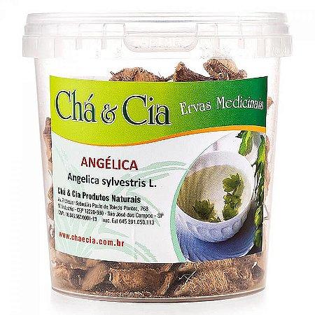 Angélica- Angelica Sylvestris- Pote 100 grs- Cha e Cia