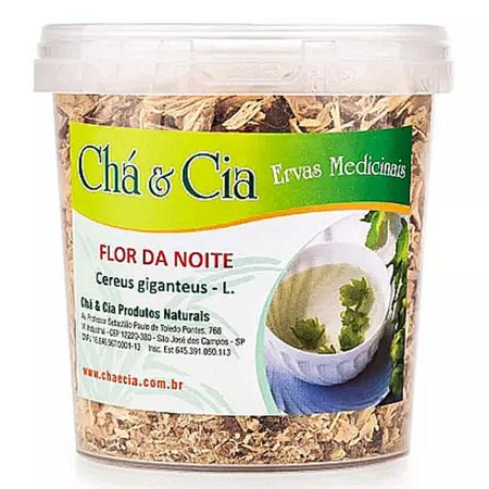 Flor da Noite- Cereus Giganteus- Pote 100 grs- Cha e Cia
